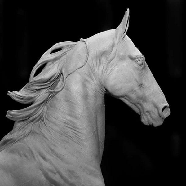 Референсы для лепки головы лошади